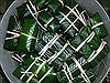 Xuất khẩu 40 tấn bánh chưng phục vụ Việt Kiều