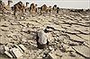 Nhọc nhằn buôn muối nơi sa mạc
