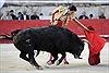 Oai hùng lễ hội đấu bò tót ở Pháp