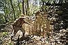 Phát hiện một thành phố cổ Maya