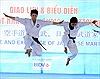 Kết thúc giải vô địch võ thuật cổ truyền 2014