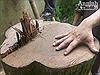 Nhóm trộm gỗ sưa đỏ Hà Nội lĩnh án tù