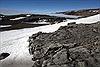 Phát hiện rừng cây hóa thạch tại Nam cực
