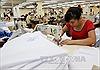 Việt Nam không chịu nhiều tác động khi Hy Lạp vỡ nợ