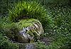 Những khu vườn lạ thường trên thế giới