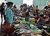 Dân Đà Nẵng bớt ăn cá trước tin cá chết hàng loạt
