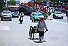 Người Hà Nội nhọc nhằn trong nắng nóng
