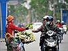 Nồng nàn hoa bưởi giữa phố Hà Nội
