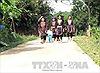 Người Dao Hoành Bồ có việc làm nhờ chương trình OCOP về bản