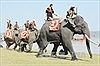 Tưng bừng hội đua voi và thuyền độc mộc tại lễ hội cà phê Buôn Ma Thuột