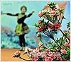 Rực rỡ 'Lễ hội hoa đỗ quyên' trên đỉnh Fansipan