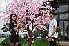 Trải nghiệm Lễ hội Mặt trời mọc tại Sun World Halong Complex
