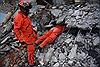 Ít nhất 90 người đã thiệt mạng trong trận động đất 'thế kỷ' tại Mexico