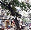 VNPT Hà Nội phản hồi về ngổn ngang dây cáp viễn thông tại phố Đội Cấn