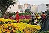 TP Hồ Chí Minh có khoảng 130 chợ hoa Tết 2018