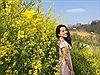 Mê đắm sắc vàng lung linh hoa cải Fansipan