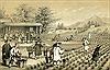 Vụ đánh cắp chè thế kỷ, huỷ hoại nền kinh tế Trung Quốc - Kỳ 1