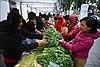 Ấm áp, sôi nổi Hội chợ xanh của Thông tấn xã Việt Nam