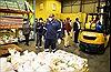Liên hợp quốc kêu gọi hành động để tránh khủng hoảng lương thực