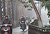 Thời tiết 1/1: Mưa rào nhiều nơi, Hà Nội rét vào đêm và sáng sớm