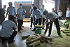 Một hành khách từ Nhật Bản mang nhiều sản phẩm nghi chế tác từ ngà voi