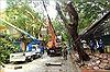 Trên 294.000 khách hàng phải tạm cắt điện do ảnh hưởng của bão số 3