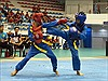 668 vận động viên tham gia Giải Vô địch trẻ Vovinam toàn quốc năm 2019