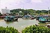 Quảng Ninh: Phòng chống mưa lũ, sạt lở đất do hoàn lưu bão số 2