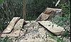 Điều tra, xử lý nghiêm vụ phá rừng đặc dụng tại Đắk Lắk