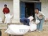 Hơn nửa triệu người nghèo nhận được gạo hỗ trợ của Chính phủ trước Tết Nguyên đán