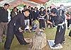 Công bố nghề rèn của người Nùng An là Di sản văn hóa phi vật thể quốc gia