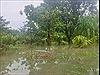 Cần xử lý dứt điểm tình trạng ngập lụt do thủy điện Quảng Tín