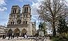 Tại sao Nhà thờ Đức Bà Paris lại quá nổi tiếng?