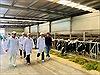 Trang trại bò sữa Vinamilk là hạt nhân xây dựng vùng an toàn dịch bệnh theo quy định Quốc tế