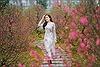 """""""Thành phố biển hồ"""" đón thêm kỷ lục mới với Lễ hội hoa đào lớn nhất mở cửa xuyên Tết"""