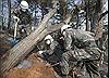 Hàn Quốc nâng cảnh báo lên mức cao nhất vì cháy lớn tại thị trấn biên giới