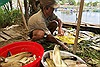 130,8 tấn cá chếttrắng sông Đại Giang do thiếu oxy