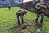 Rà soát, xử lý bom mìn ở khu di tích Kinh thành Huế