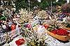 Quan hệ Việt Nam - Nhật Bản - Bài 1: Ấn tượng Lễ hội hoa anh đào Hà Nội