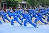 Màn đồng diễn môn võ Vovinam lớn nhất Việt Nam