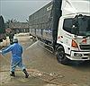Giám sát cửa khẩu, đường mòn lối mở để ngăn dịch tả lợn châu Phi