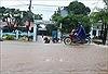Đắk Lắk: Hàng trăm ngôi nhà bị ngập, hàng nghìn ha lúa chìm trong biển nước