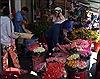 Hoa hồng tăng giá gấp đôi, tour du lịch 'đắt hàng' dịp Lễ Tình yêu