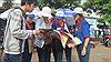 Hàng ngàn sinh viên tình nguyện sẵn sàng 'tiếp sức' thí sinh thi THPT Quốc gia 2019