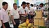 Xúc tiến tiêu thụ, xuất khẩu nông sản an toàn sang Trung Quốc