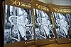 Sách ảnh '50 năm thực hiện Di chúc của Chủ tịch Hồ Chí Minh'