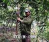 Tự hào Nông dân Việt Nam 2018: Khơi dậy động lực sáng tạo của nông dân