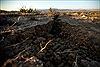 California có khả năng xảy ra động đất mạnh hơn những ngày tới