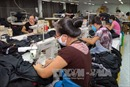 Vùng kinh tế trọng điểm phía Nam: Nhu cầu tuyển dụng lao động tăng cao