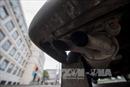 Volkswagen đối mặt với yêu cầu bồi thường hơn 10 tỷ USD